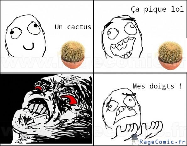 Un cactus lol