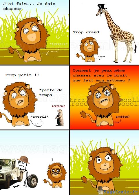 Chasse de lion