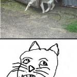 Un chat génie