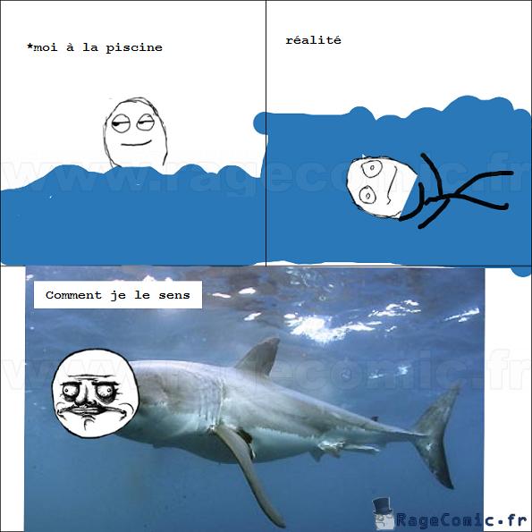 Je suis un requin !