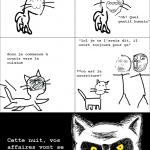 N'embêtez jamais un chat