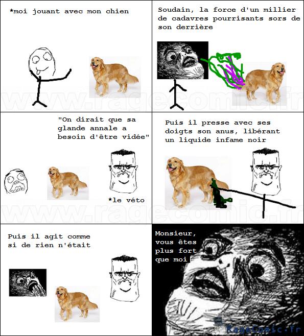 Le vétérinaire badass