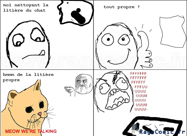 Rage de litière de chaton