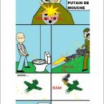 Une mouche aux WC