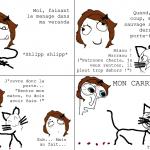 Mon chat me trolle