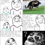 papa et maman chien