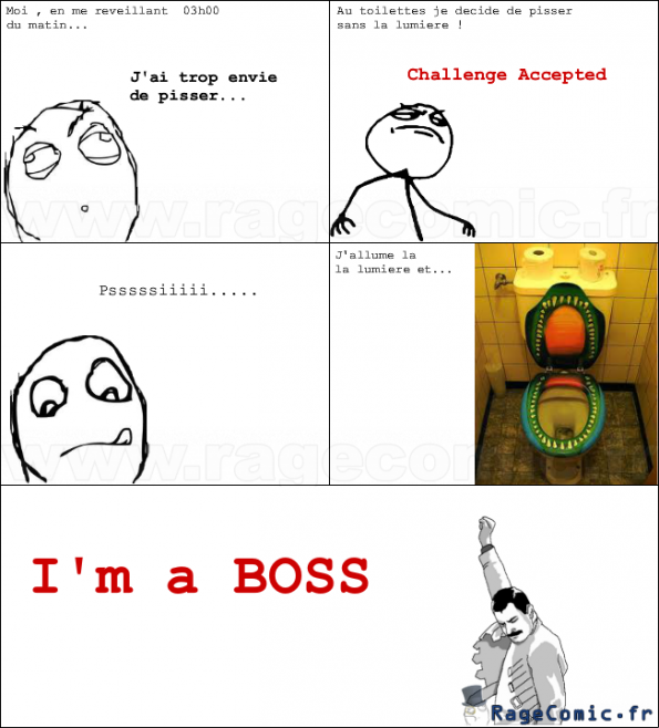 Im a boss of W.C