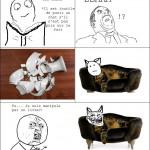 Livre sur les chats