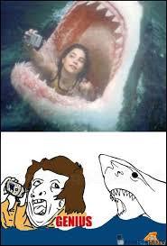 Genius ocean