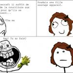 Minecraft dans la vie