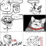 bdm à son chat