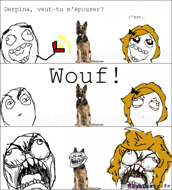 Demande en mariage trollé par un chien