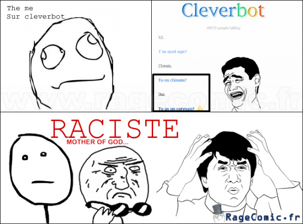 Cleverbot Raciste