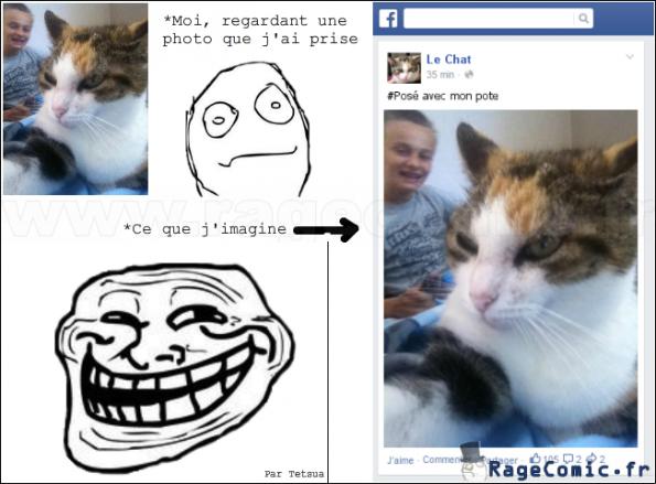 Mon chat sur facebook