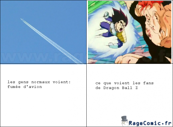 Fans de Dragon Ball Z