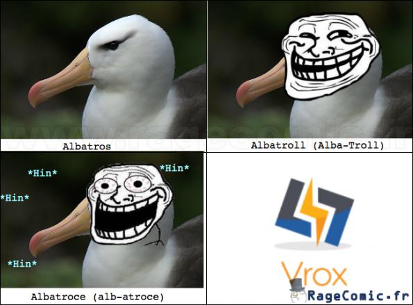 Les trois types d'albatros