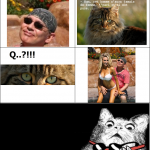 Miaou QUOI ?!