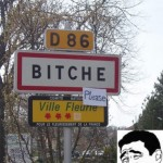 Bitche Please