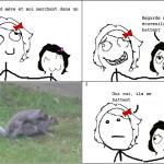 Ecureuils qui se battent