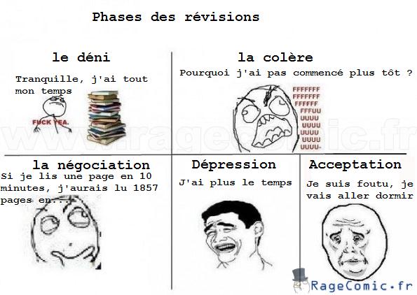 Phases des révisions