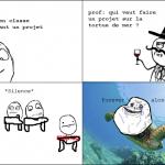 Pauvre tortue