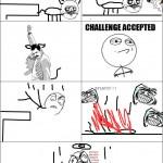 Le challenge du chat
