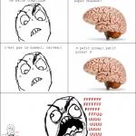Abruti de cerveau
